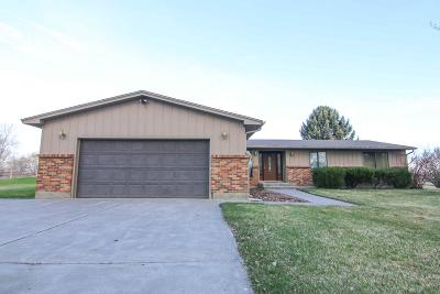 Shelley Single Family Home For Sale: 848 N 1000 E