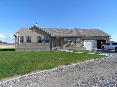 Rexburg Single Family Home For Sale: 1311 W 5000 S