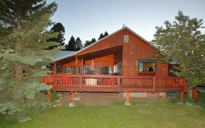 Island Park Single Family Home For Sale: 5465 Spotted Pony Trail