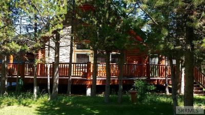 Island Park Single Family Home For Sale: 4506 Weslin Trail