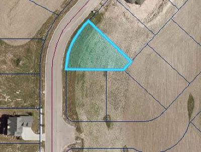 Rexburg Residential Lots & Land For Sale: L7, B3 Wildflower Drive