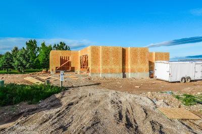 Idaho Falls Single Family Home For Sale: 1425 N Quinn Creek Road
