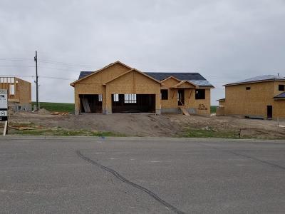 Rexburg Single Family Home For Sale: 1376 Stone Drive