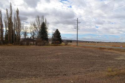 Rexburg Residential Lots & Land For Sale: 910 E 9th N