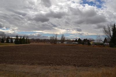 Rexburg Residential Lots & Land For Sale: 930 E 9th N