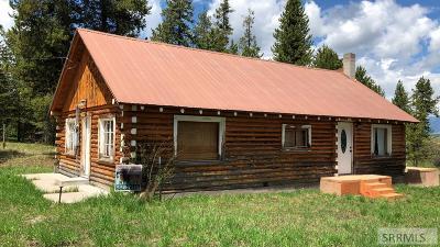 Island Park Single Family Home For Sale: 4104 Quakie Lane