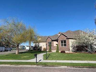 Rigby Single Family Home For Sale: 423 Snake River Circle