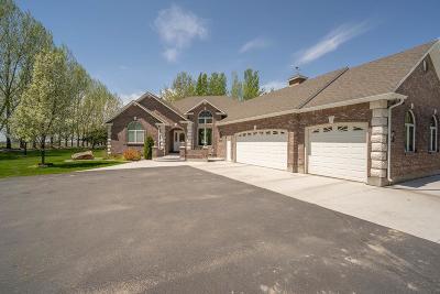 Idaho Falls Single Family Home For Sale: 590 W Copper Creek