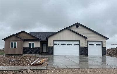 Rigby Single Family Home For Sale: 4122 E 166 N