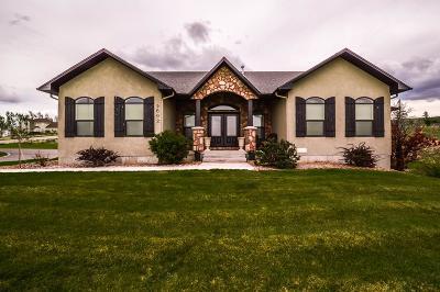Idaho Falls Single Family Home For Sale: 5602 E Rio Seco Drive