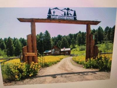Island Park Single Family Home For Sale: 5545 Fiddleback Ranch
