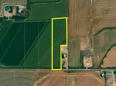 Idaho Falls Residential Lots & Land For Sale: 8.79 Ac E 81st S