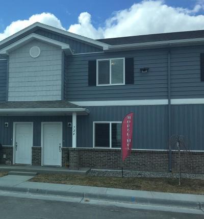 Idaho Falls Single Family Home For Sale: 760 Trails End Lane