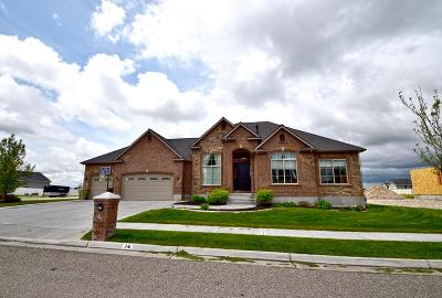 Rigby Single Family Home For Sale: 241 N 5th W