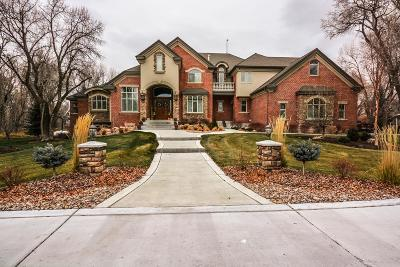 Rigby ID Single Family Home For Sale: $1,450,000