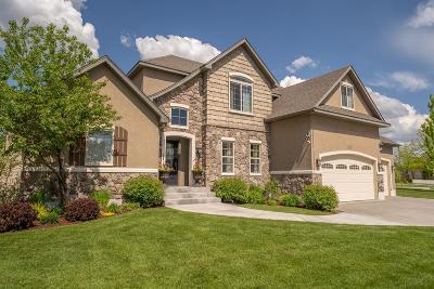 Idaho Falls Single Family Home For Sale: 210 Spirit Cove