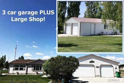 Rigby Single Family Home For Sale: 3963 E 180 N