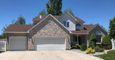 Idaho Falls Single Family Home For Sale: 2860 Sandstone Drive