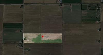Idaho Falls Farm For Sale: 13778 N 25 E