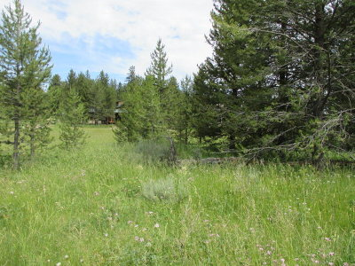 Island Park Residential Lots & Land For Sale: 3505 Buffalo Road