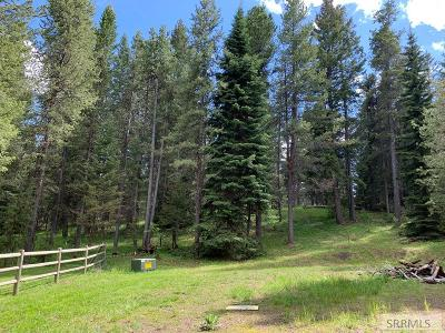 Island Park Residential Lots & Land For Sale: 3984 Bootjack Drive