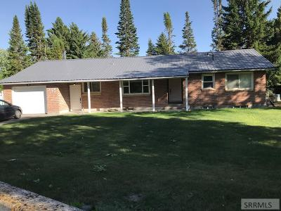 Idaho Falls Single Family Home For Sale: 195 Rogers Street