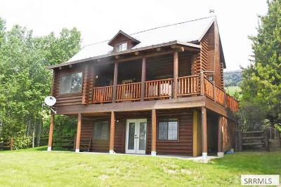 Island Park Single Family Home For Sale: 3882 Lake Breeze Drive