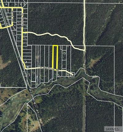 Island Park Residential Lots & Land For Sale: 4115 E Rainbow Drive