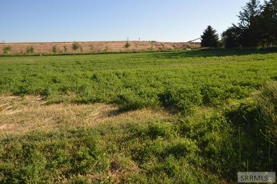 Idaho Falls Residential Lots & Land For Sale: Tbd E 49 N