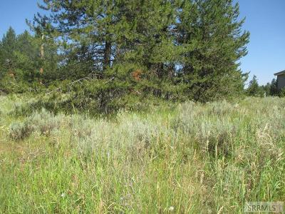 Island Park Residential Lots & Land For Sale: Tbd E Pinehaven Drive