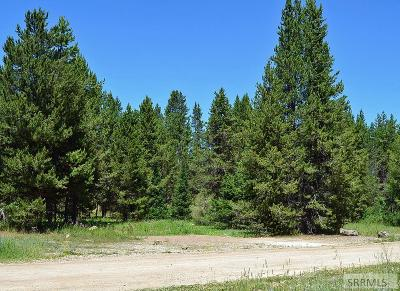 Island Park Residential Lots & Land For Sale: 3771 Lynx Drive