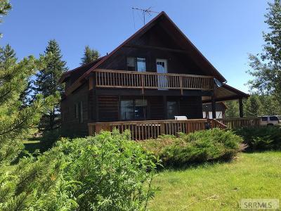 Island Park Single Family Home For Sale: 3763 Sand Crane Drive