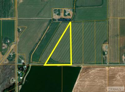 Idaho Falls Residential Lots & Land For Sale: 10.56 Ac E 81st S