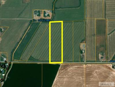 Idaho Falls Residential Lots & Land For Sale: 10.204ac E 81st S