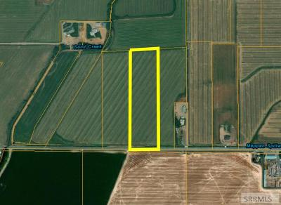 Idaho Falls Residential Lots & Land For Sale: 10.201ac E 81st S