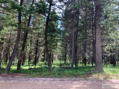 Island Park Residential Lots & Land For Sale: 3948 Ammon Circle
