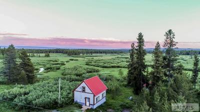 Island Park Single Family Home For Sale: 3596 S Beaver Springs Road