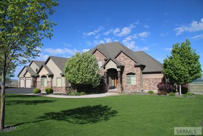 Idaho Falls Single Family Home For Sale: 9936 S Henry Creek Road