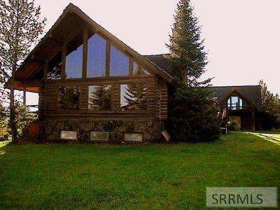 Island Park Single Family Home For Sale: 4194 Grand View Road
