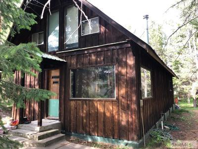 Island Park Single Family Home For Sale: 4030 Choctaw Road