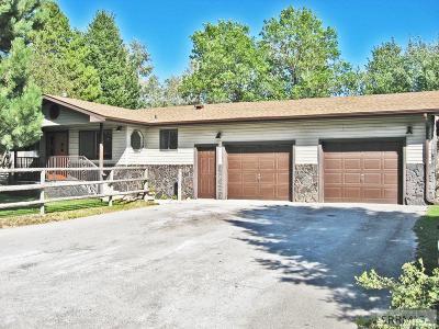 Idaho Falls Single Family Home For Sale: 9815 S 1st E