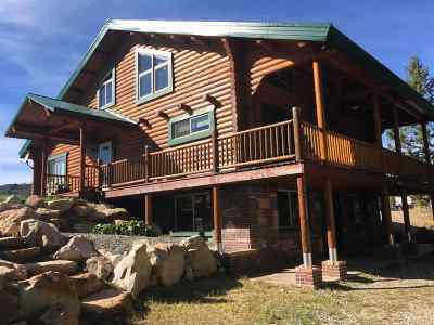 Lava Hot Springs ID Single Family Home For Sale: $479,900