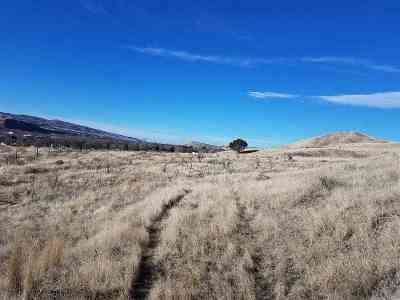 Pocatello Residential Lots & Land For Sale: 231 Acres S 5th