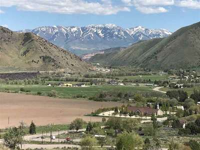 Pocatello Residential Lots & Land For Sale: Lot 4 Ridgeview Estates