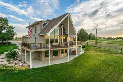Pocatello Single Family Home For Sale: 1347 Syphon Rd