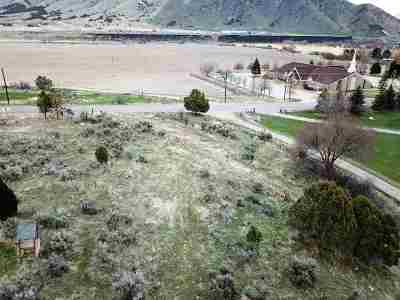 Pocatello Residential Lots & Land For Sale: Portnuef Road (Parcel 2)