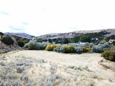 Pocatello Residential Lots & Land For Sale: Portnuef Rd. (Parcel 3)
