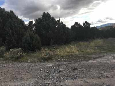 Pocatello Residential Lots & Land For Sale: Tbd Trayis Ridge