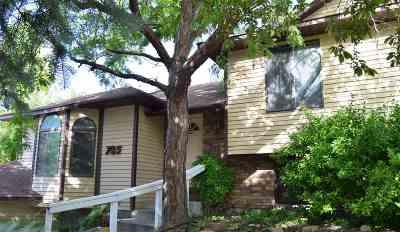 Chubbuck Single Family Home For Sale: 785 Moran St