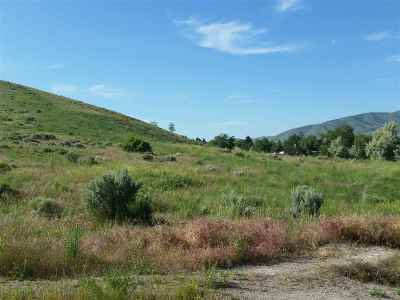 Pocatello Residential Lots & Land For Sale: 32 Acres Elm Street